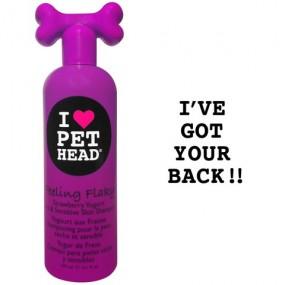 Shampooing Pet Head FEELING FLACKY