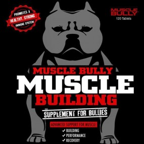 MUSCLE BULLY MUSCLE BUILDING mvp