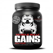 Muscle Bully Gains Mass gainer mvp
