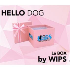 "La BOX by WIPS "" HELLO DOG"""