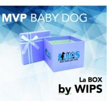 "La BOX by WIPS "" MVP BABY DOG"""