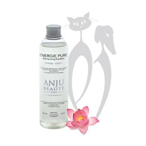 Shampooing Energy Pure ANJU