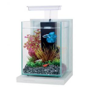 Kit Aquarium Wiha Cérusé blanc