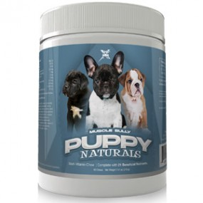 Muscle Bully Puppy naturals chew mvp